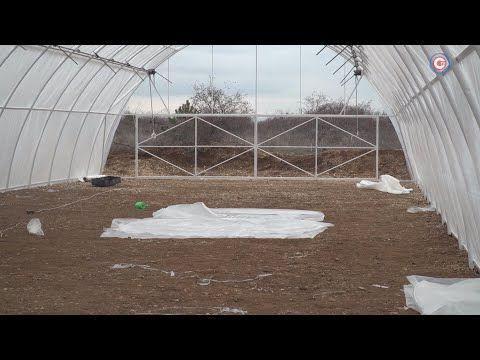 В Севастополе строят теплицы для выращивания земляники (СЮЖЕТ)