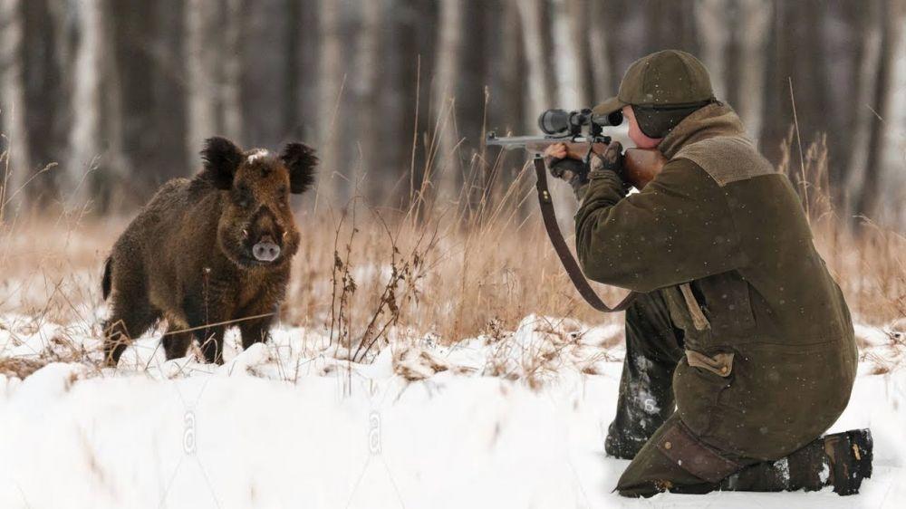 Аксёнов изменил правила охоты в Крыму