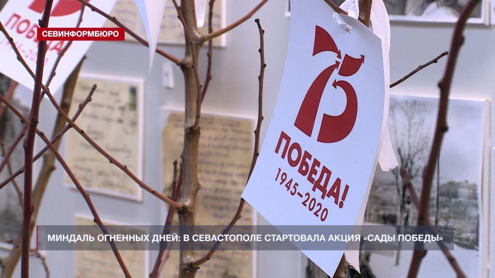 Миндаль огненных дней: в Севастополе стартовала акция «Сады Победы»