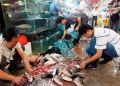 Коронавирус попал на уханьский рынок извне, установили ученые