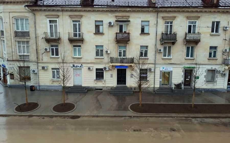 На Большой Морской в Севастополе начали сажать деревья