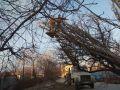 Симферопольские улицы расчищают от упавших деревьев и веток