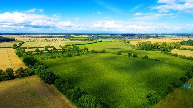 В Черноморском районе в аренду будет предоставлен земельный участок