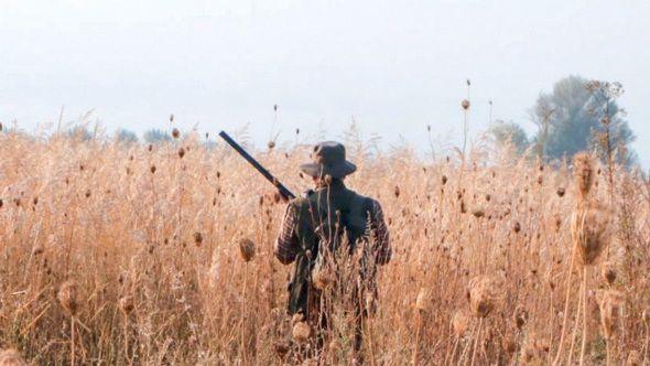 Минприроды Крыма информирует охотников и пользователей охотничьих угодий