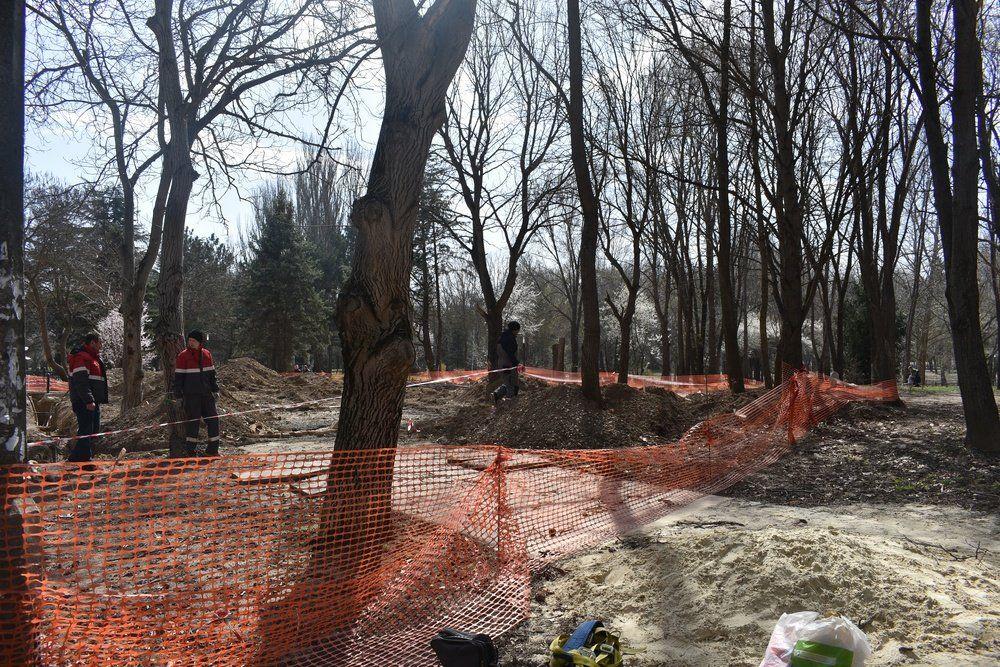 На входе в Гагаринский парк вырубят деревья для строительства шахты коллектора, , ВИДЕО