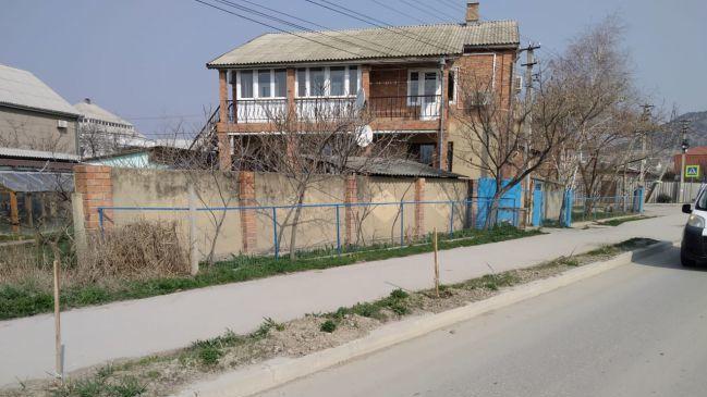 В Судаке украли деревья, высаженные в рамках акции «Сад Памяти»