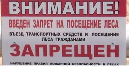 МЧС Республики Крым напоминает: введены ограничения на посещение лесов сроком на 21 день
