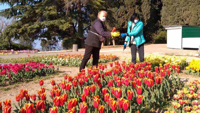 Героям коронавирусной войны: как в Крыму дарили врачам тюльпаны НБС