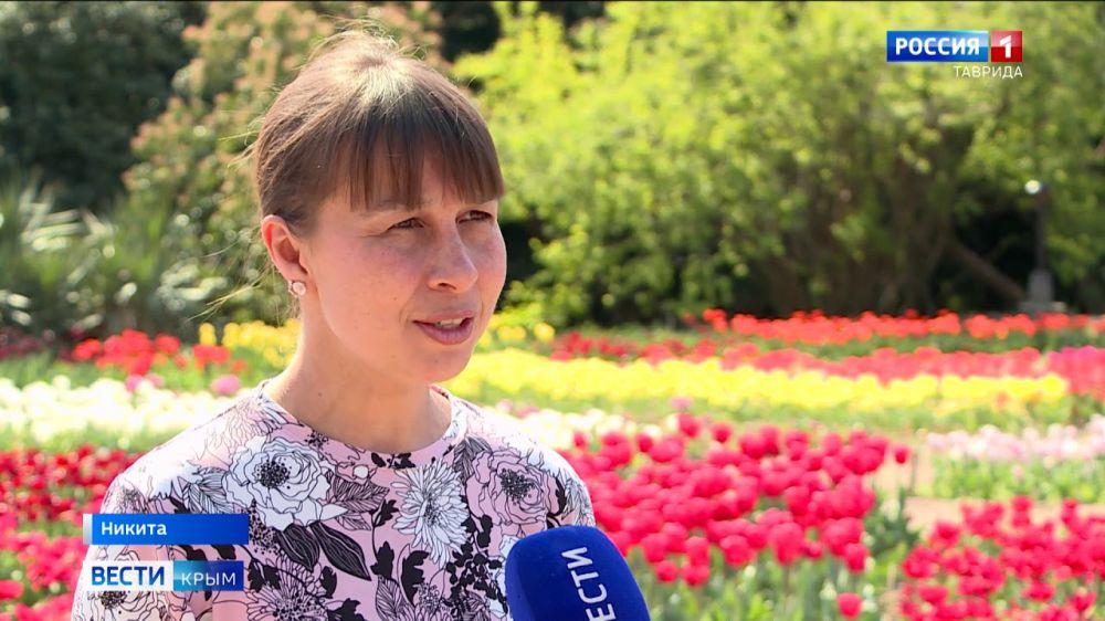 Никитский ботанический сад подарил медикам тюльпаны