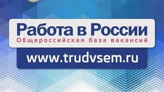 На портале «Работа в России» можно дистанционно обратиться в центры занятости