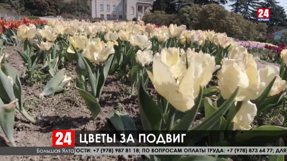 В Никитском ботаническом саду сотрудники собирают тюльпаны, чтобы подарить их медикам