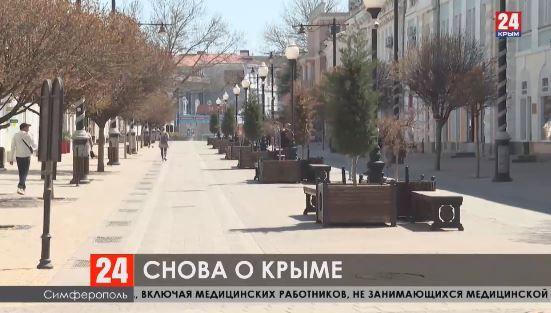 Впервые видеоконференция Совбеза ООН прошла с участием крымчан