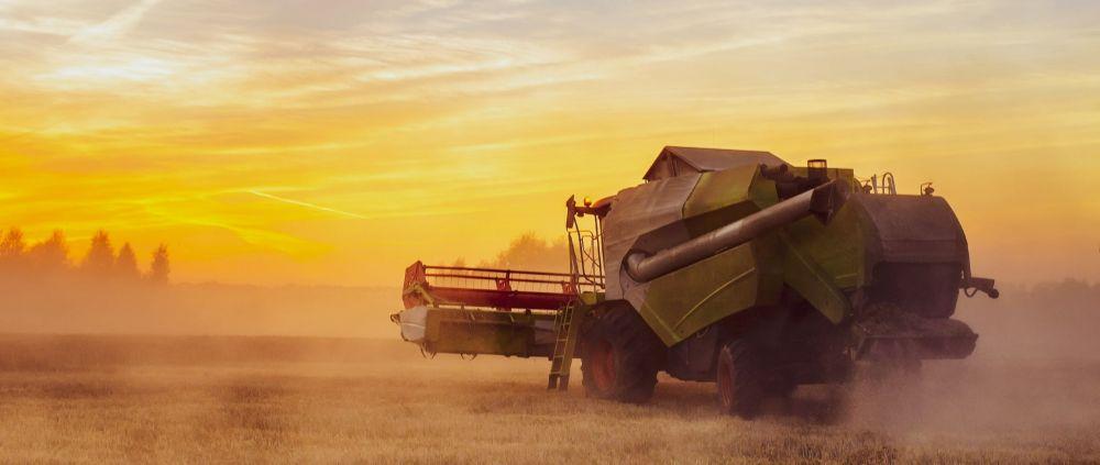 «День поля – 2020» в Крыму пройдет в формате видеоконференции