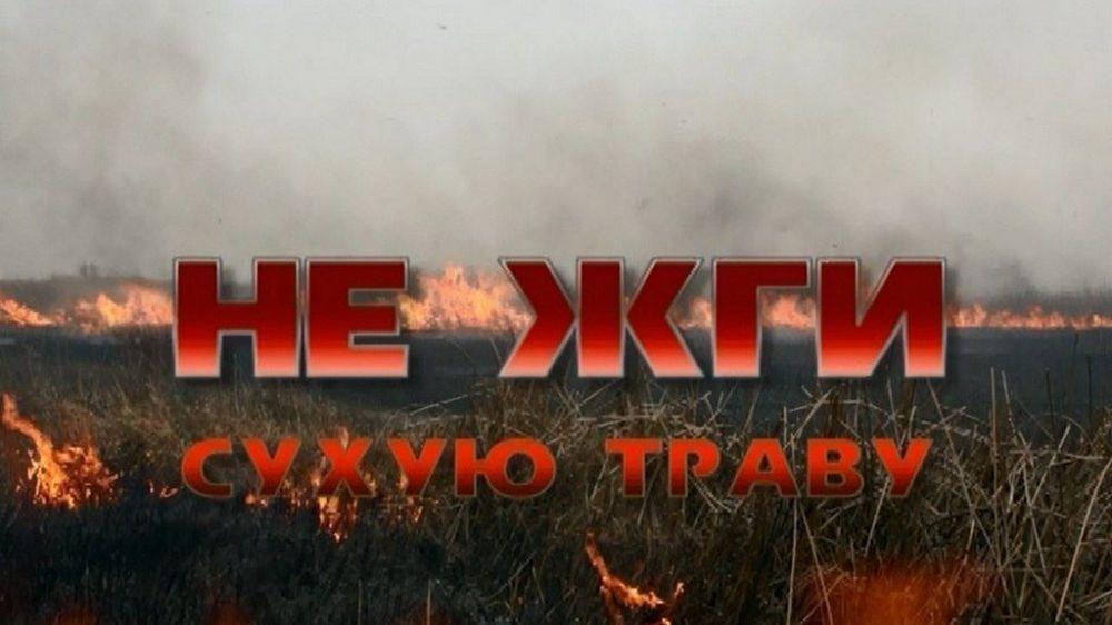 МЧС Республики Крым напоминает об ответственности за нарушение требований пожарной безопасности