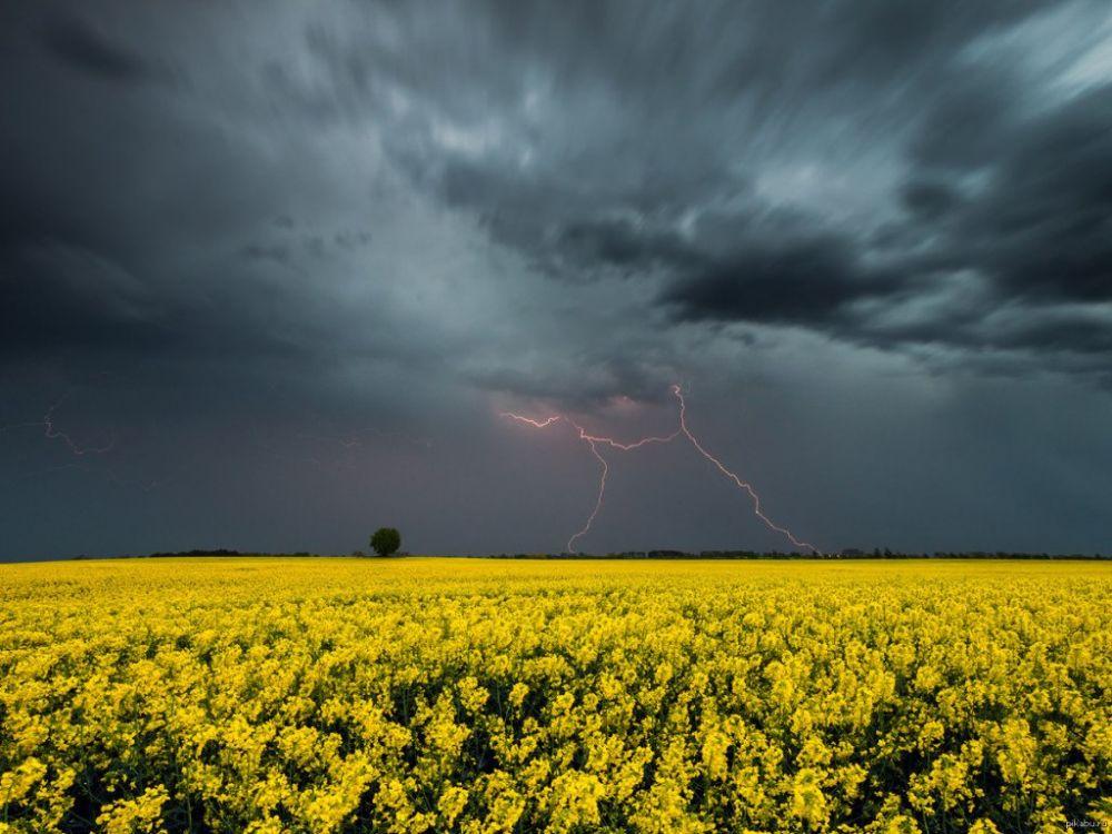 В Крыму лето начнется с дождей и гроз