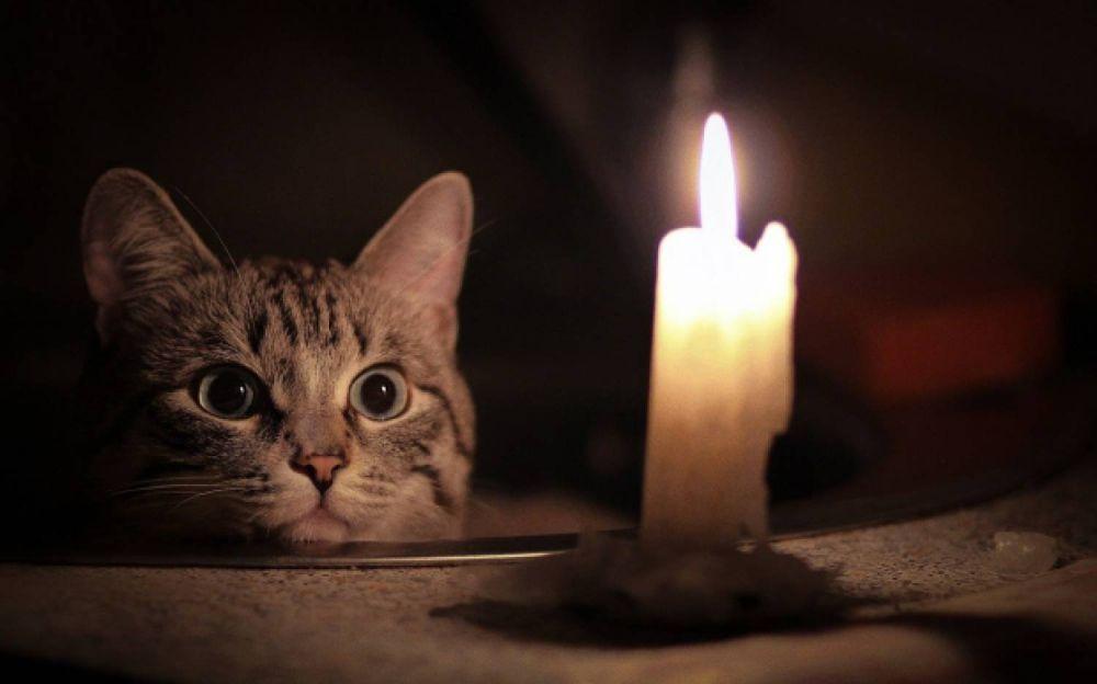 Где в Симферополе сегодня не будет света