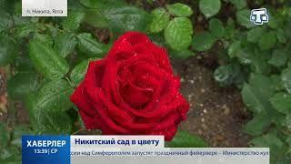 Никитский сад в цвету