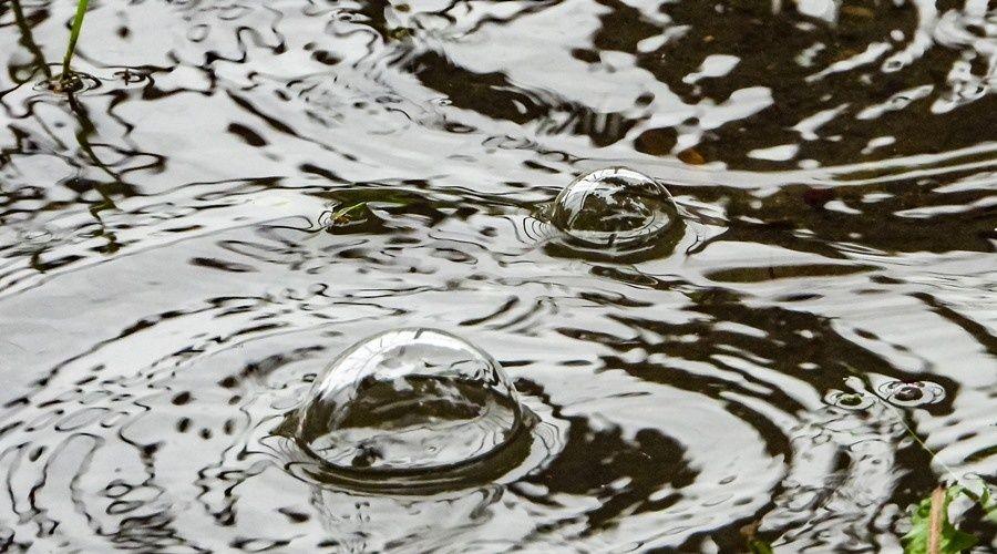 В среду в Крыму 24 градуса тепла, дожди