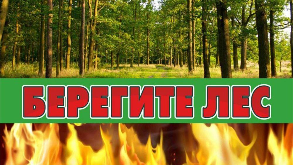 Минприроды Крыма продлевает ограничение пребывания граждан в лесах и въезда в них транспортных средств