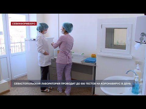 Севастопольская лаборатория проводит до 500 тестов на коронавирус в день