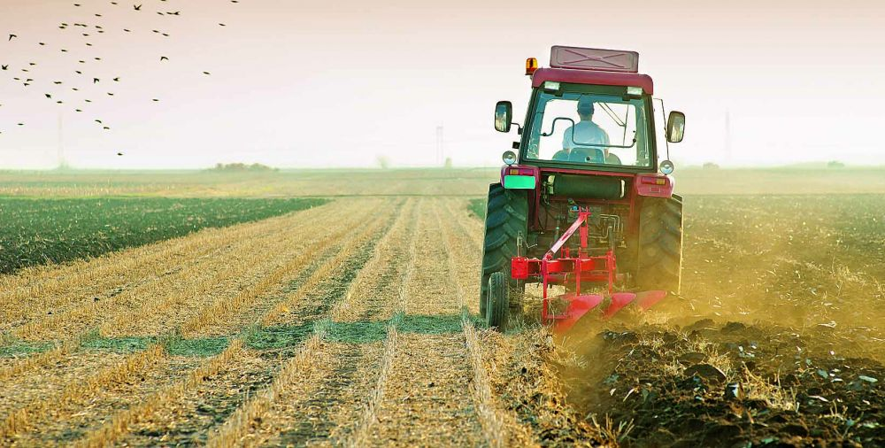 В Крыму усиливают меры по борьбе с нецелевым использованием сельскохозземель