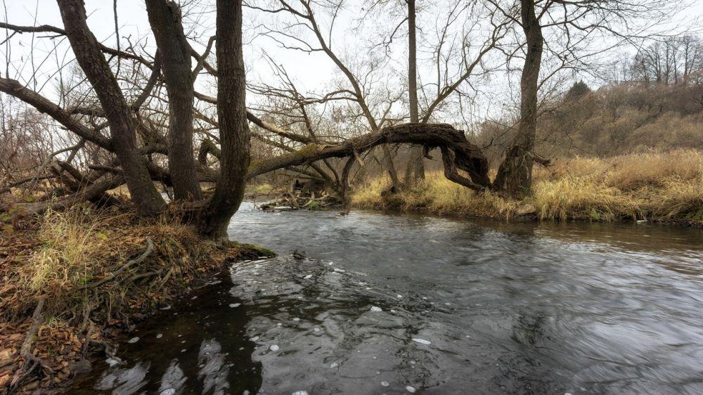 Жара жарой, а в реках Крыма повышается уровень воды