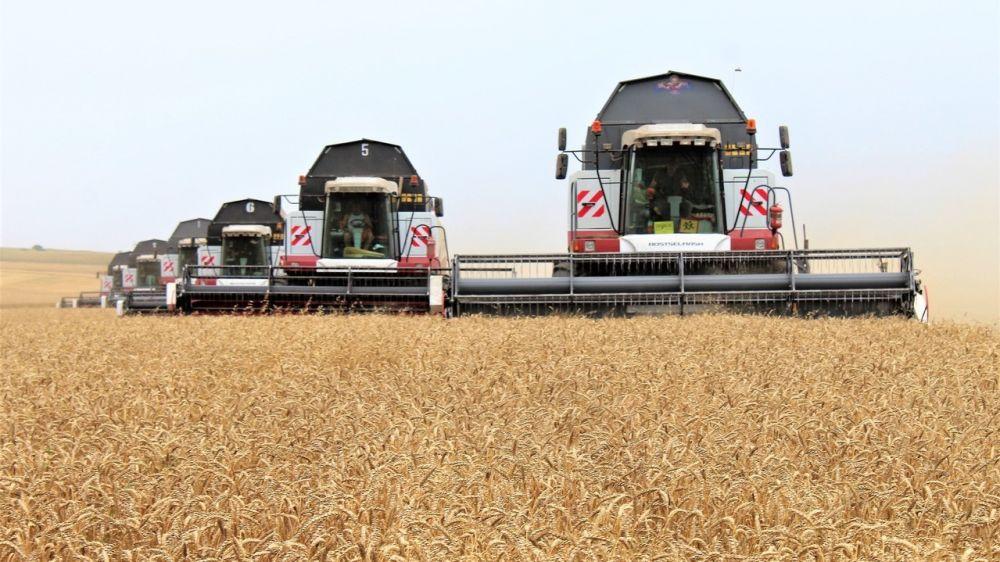Андрей Рюмшин: Минсельхоз Крыма довел до крымских аграриев более 1 млрд 241 млн рублей