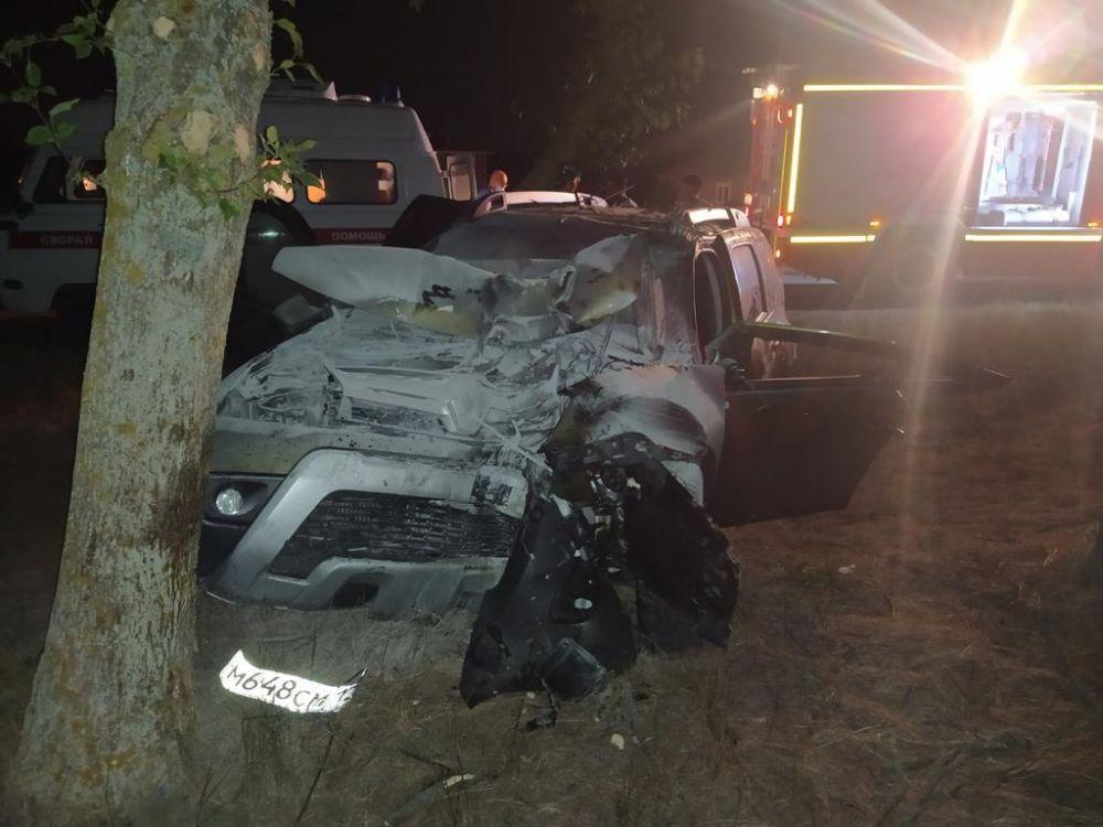 В Ленинском районе водитель врезался в дерево и умер