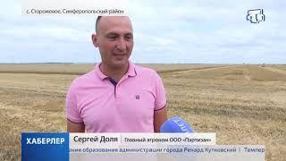 Урожай зерна 2020