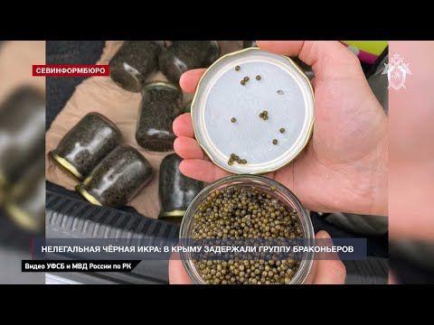 В Крыму браконьеры нелегально торговали чёрной икрой