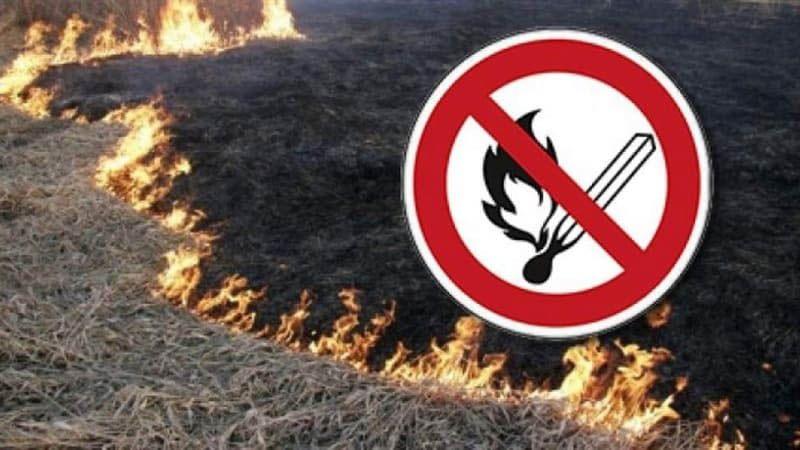 Внимание! В Севастополе — «оранжевый» класс пожароопасности