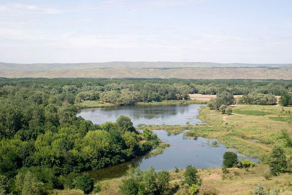 Тот самый Анатолий Вассерман рассказал о проекте подачи воды в Крым из реки Кубань