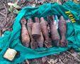 У станции Мекензиевы горы в Севастополе найдены боеприпасы