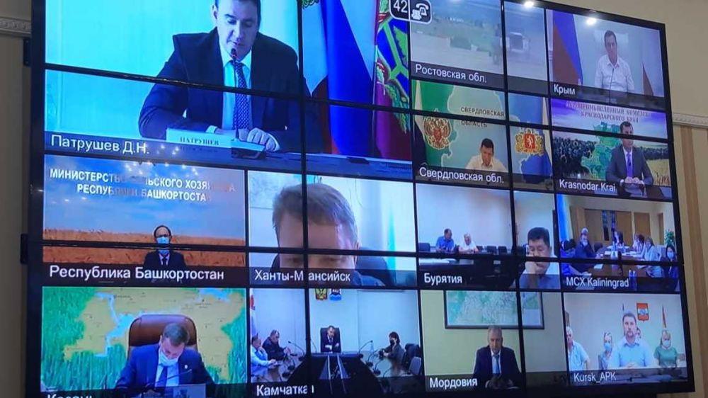 Состоялось пленарное заседание Всероссийского Дня поля-2020
