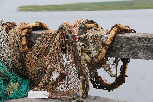 В Керчи предложили создать музей рыбной отрасли