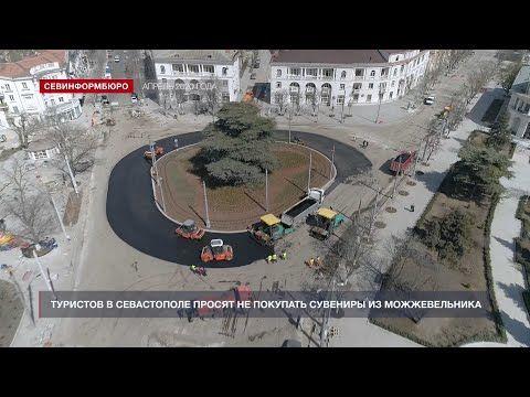 Туристов в Севастополе просят не покупать сувениры из можжевельника