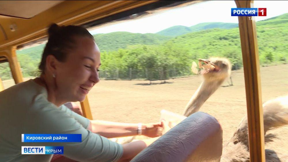 В Крыму возобновил работу парк антилоп
