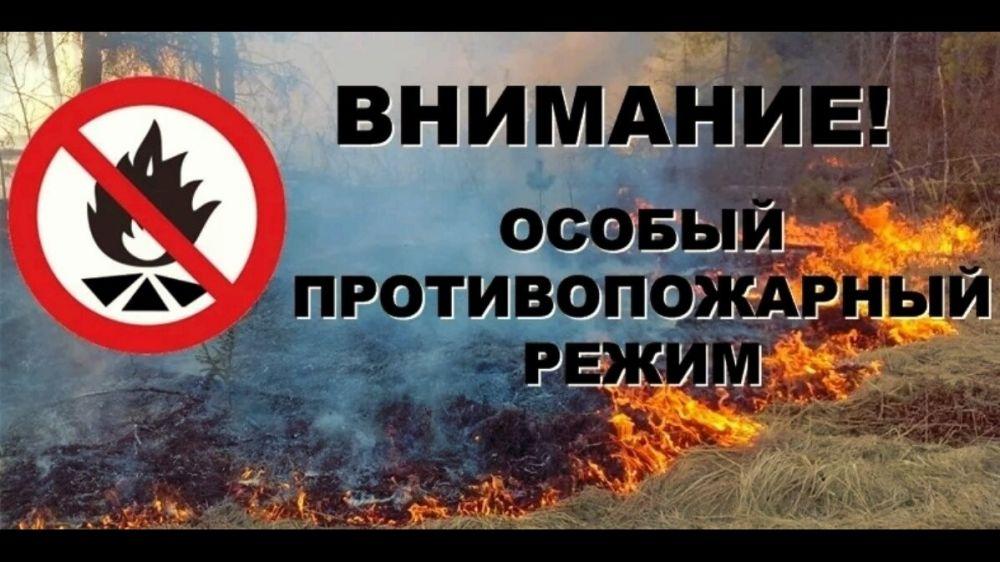 В Крыму продолжает действовать особый противопожарный режим