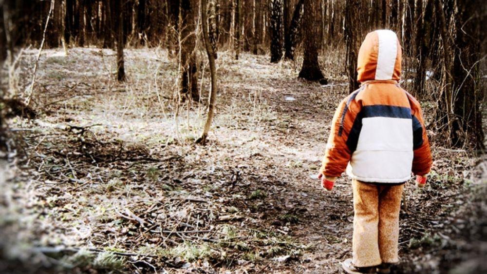 МЧС: Если ребёнок потерялся в лесу
