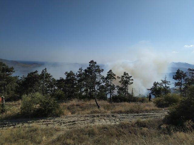 В Крыму запрещено посещение лесов