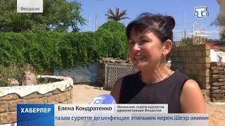 Насколько безопасны пляжи Феодосии