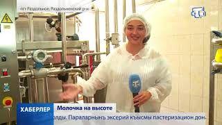 200 миллионов рублей на развитие молочной отрасли выделят в этом году в Крыму