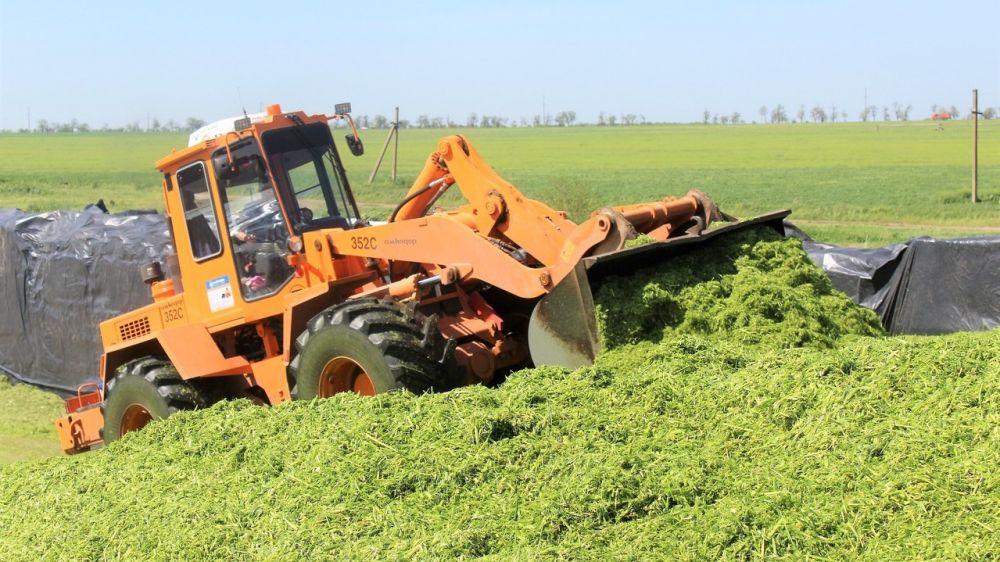 Крымские аграрии заготовили первые 5 тысяч тонн силоса