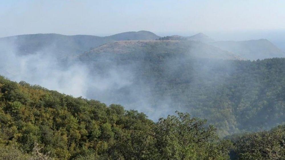 В Крыму на ЮБК горят леса