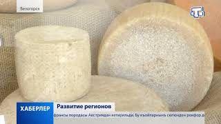 В Крыму активно развивается животноводство и инфраструктура