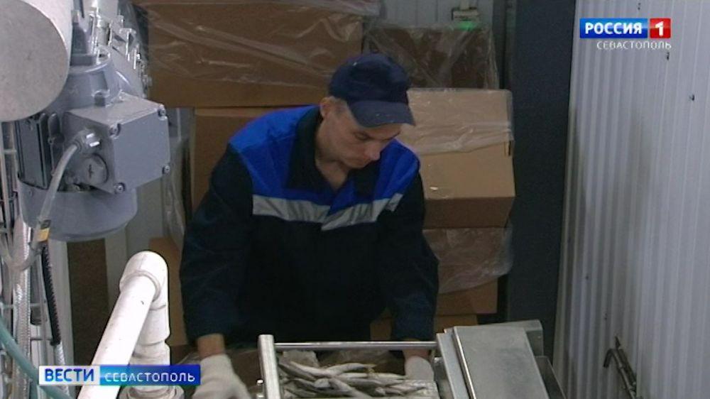 Рыболовная компания в Инкермане расширяет производство
