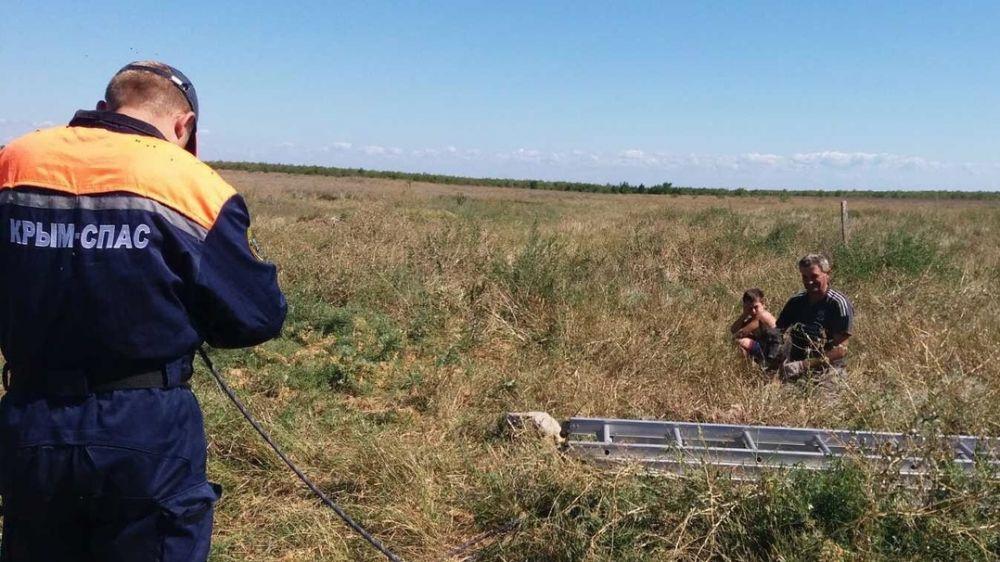 В Крыму пёс провалился в колодец глубиной 11 метров