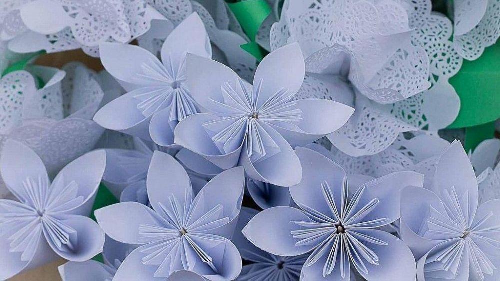 В Республике Крым с 19 по 26 сентября пройдет благотворительная акция «Белый цветок»