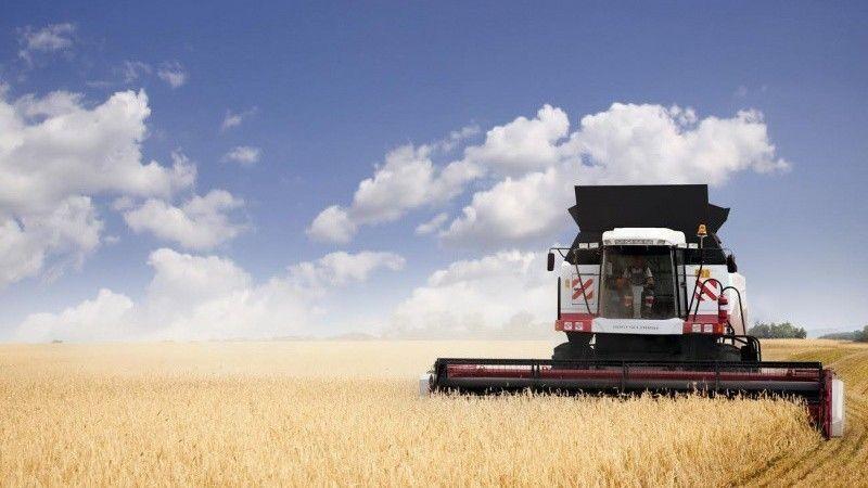 В Ленинском районе завершили уборку зерновых и зернобобовых культур