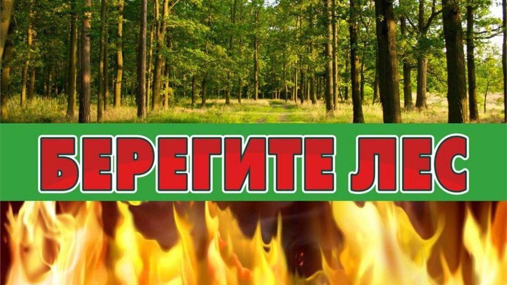 В 2020 году в Крыму были зафиксированы десятки природных пожаров